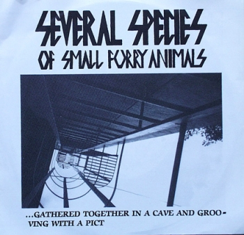 Several Species Of Small Furry Animals - Pain / Black Zone / +2 - 7