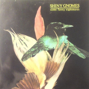 Shiny Gnomes - Some Funny Nightmares - LP