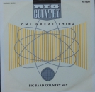 Big Country - One Great Thing  (Big Baad Country Mix) / Look Away (Outlaw Mix) / Song Of The South - 12""