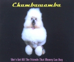 Chumbawamba - She's Got All The Friends That Money Can..- MCD