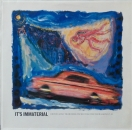 It's Immaterial - Driving Away From Home (7:10) / A Crooked Tune / Trains, Boats, Planes - 12""