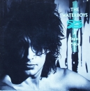 Waterboys, The - A Pagan Place - LP